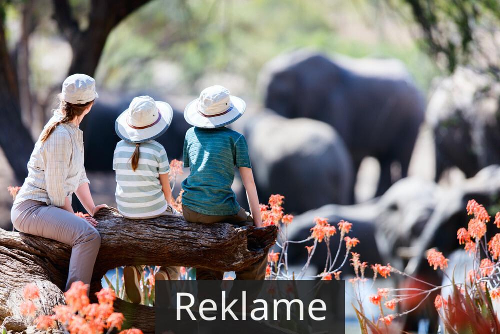 Tag familien med på safari i Afrika