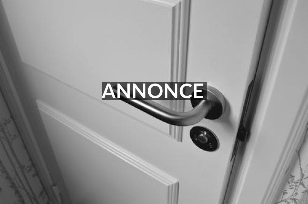 Værd at vide om de forskellige typer af døre, før du beslutter dig, hvilken en du ønsker